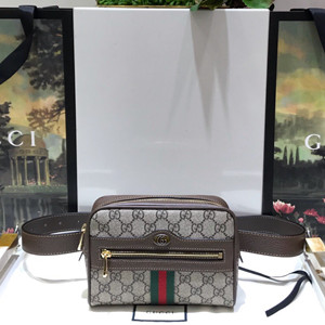 gucci ophidia small belt bag #517076